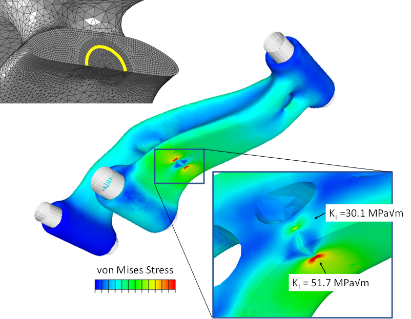 Analysis of a crack in the topology optimized lever